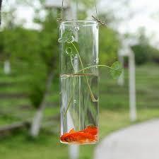 Glass Vase Cylinder Aliexpress Com Buy Hanging Glass Cylinder Vase Or Seated Flower