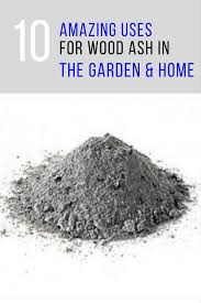 Ash Can For Fireplace by Wood Ash Uses 10 Ways You Can Use It In Your Garden U0026 Home