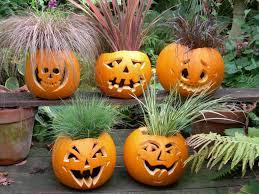 Dia De Los Muertos Halloween Decorations Decorating The Conservatory Tanglewood Conservatories