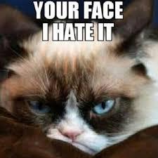 Grumpy Face Meme - luxury your face grumpycat meme grumpy cat pinterest wallpaper
