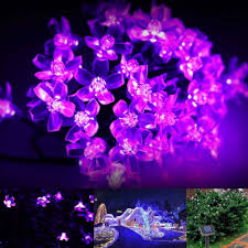 Outdoor Solar Fairy Lights by Solar Fairy Lights 23ft Waterproof 50 Leds 1 2 V Violet Portable