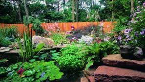 Backyard Pond Building How To Make A Rock Pond Or Babbling Brook Homesteady