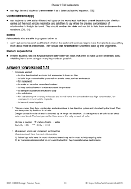 worksheet cell processes worksheet answers photosynthesis