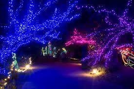 Zoo Lights Phoenix 12 Magical Christmas Displays In Arizona