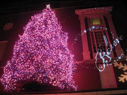 macy s tree lighting boston best places to see christmas lights in boston weekendpick