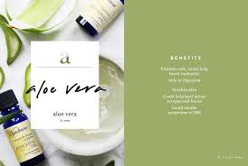wellness encyclopedia benefits of aloe vera fresh cooling aloe