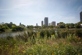 Image Gallery Lincoln Park Map by Photo Gallery Eugenie Terrace Luxury Apartments In Chicago
