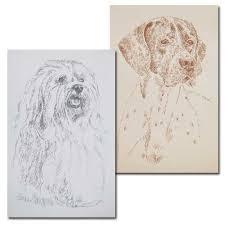 american pitbull terrier merchandise bull terrier gifts