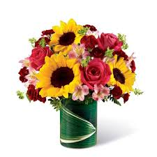 cheap flowers free delivery leaf my sunflowers alone at send flowers
