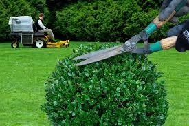 garten und landschaftsbau ausbildung gärtner fachrichtung garten und landschaftsbau ausbildung