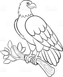 coloring pages wild birds cute smiling eagle stock vector art