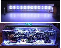 best 25 led aquarium light 20l 5w blue and white lights fish tank