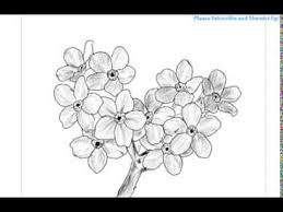 how to draw a bunch of flowers youtube