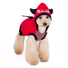 little devil halloween costume little devil dog sweater by dogo with same day shipping baxterboo