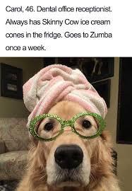 Animal Meme - animal memes animaipics twitter