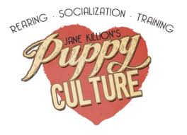 affenpinscher breeders canada worldwide breeder map u2013 puppy culture