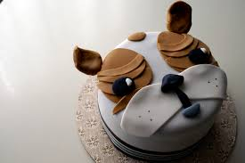 coco cake land cakes cupcakes vancouver bc bow wow wow yippee