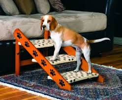 2 things you must know about dog ramps and pet stairs caring for