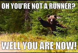 Running Bear Meme - these are a few of my favorite things mar on the run
