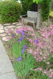 Big Backyard Landscaping Ideas It U0027s Not Exactly A Front