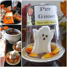 amazing halloween u0026 fall ideas you will adore