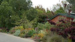 Southern California Botanical Gardens by Southern California Gardening Attracting Pollinators