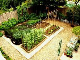 Vegetable Pot Gardening For Beginners Full Size Of Kitchen How To Start A Small Vegetable Garden Home