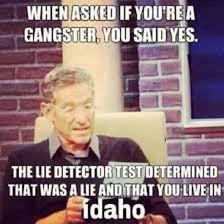 Funny Gangster Meme - 265 best funniest memes online images on pinterest funny stuff