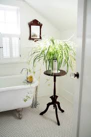 Home Decor Cheap Online Doors House T Decoration Ideas For Innovative Plant And