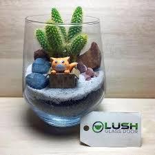 ready made cute succulent terrariums created by lush glass door