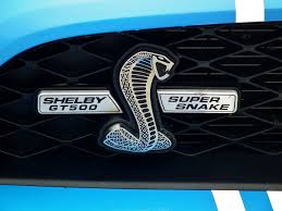 logo ford mustang shelby file 2012 ford mustang shelby gt 500 super snake coupe 8452035533