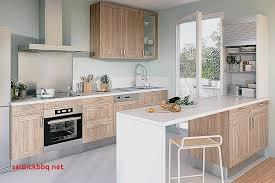 charniere meuble cuisine lapeyre pour idees de deco de cuisine