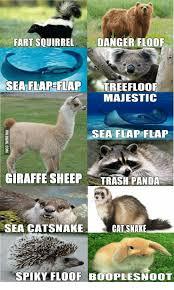 Giraffe Hat Meme - fart squirrel danger floof majestic sea flap flap giraffe sheep