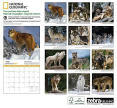 2017 wolves national geographic wall calendar national