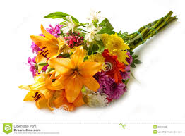 beautiful bouquet of flowers beautiful bouquet of bright flowers stock image image of color