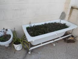 Bathtub Planter File Bathtub Pot Jpg Wikimedia Commons