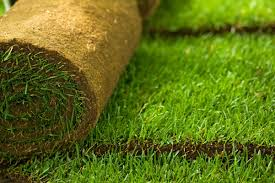 Sod Estimate by Sod Removal Installation Elite Lawnscapes
