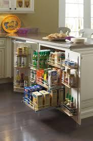 kitchen cabinet organizers home depot kitchen ideas kitchen cabinet organizers also stunning kitchen