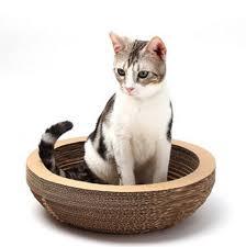 Cat Scratch Lounge Magic Union 20 Inch Cat Bed Hammock With Scratch Post Lowest