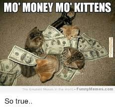 Meme Mo - mo money mot kittens the greatest memes in the world funny memescom