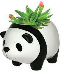 panda bear plant pot asian indoor pots and planters by karma
