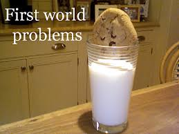 1st World Problems Meme - a great list of 25 hilarious first world problem memes all the