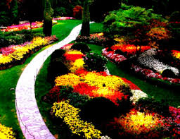 gardens front yard landscaping ideas on a budget images goodhomez