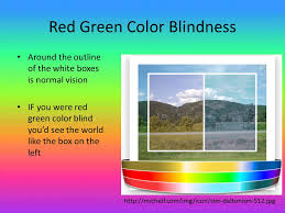 Green Red Color Blind By Brianna Kearney And Juliet Ruhe Ppt Video Online Download