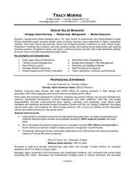 Resume Template For Engineers Engineer Professional Sample Resume It U0027s Time To Update My Ho