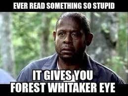 Gross Memes - best of 27 mad meme testing testing