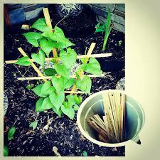reclaimed scrap wood trellis diy garden trellis to support your