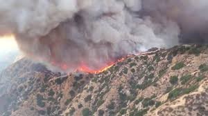 Wildfire Honey by 5 800 Acre Wildfire Is Largest In Los Angeles History Wgn Tv