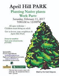portland native plants friends of april hill park southwest neighborhoods inc