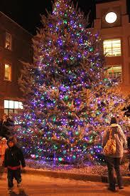 lights of christmas stanwood christmas lights of christmas stanwood best bedroom ideas on